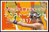 テニストーナメント2016
