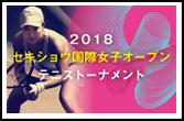 テニストーナメント