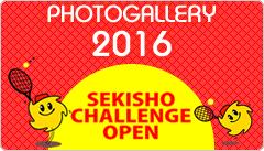 photogallery2016